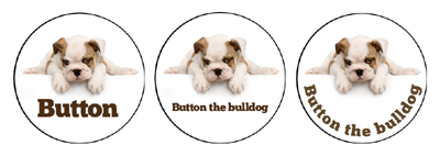 Button the bulldog puppy